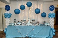 Rodjendan-dekoracije-2016-013